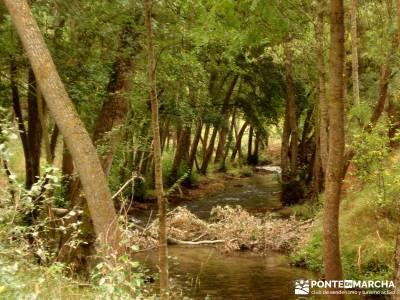 Hoces Río Duratón - Villa Sepúlveda; senderismo personalizado fin de semana romantico